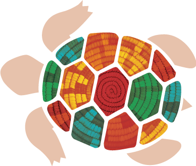 Illustration of a turtle with a colorful shell, representing the colors of the different issue areas